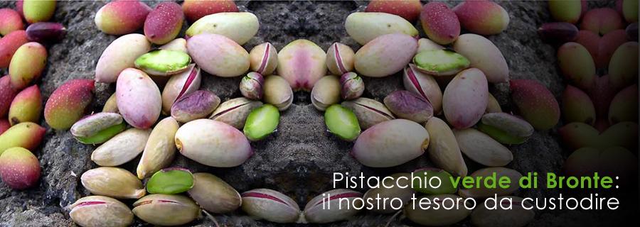 Il Pistacchio di Bronte | Fonte: http://consorziopistacchioverde.it/img/slide_3.jpg